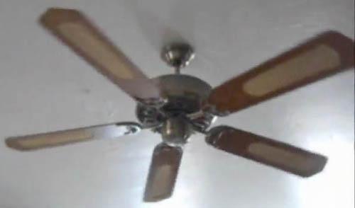 Early Five Blade Ceiling Fan
