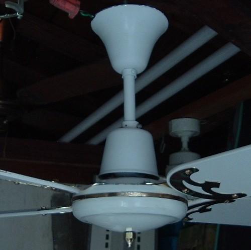 Moss Tropical Breeze Ceiling Fan Golden Fan Electric