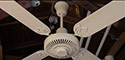 Lasko Plastic White Ceiling Fan