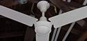Leslie Locke Metal Blade Ceiling Fan Model DF-361
