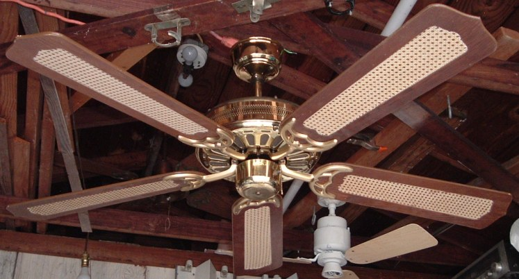 Moss Hf D Series Polish Brass Ceiling Fan