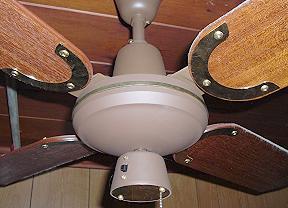 Moss Tropical Breeze Ceiling Fan Model Tfp 348