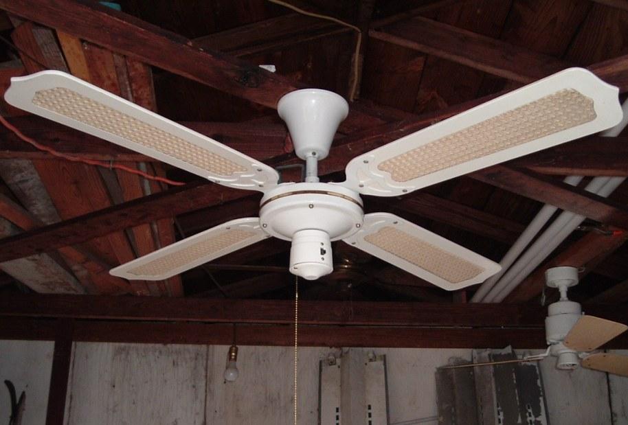 Moss Tropical Breeze Tfs 48 Quot Series Ceiling Fans