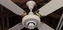 Moss Ceiling Fan Model T3052B
