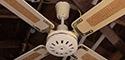 Breeze Ceiling Fan by Breeze Industries Inc. 48 Inch Metal Blades