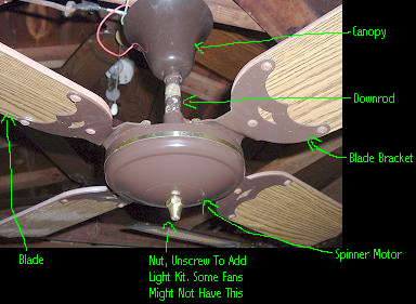 Spinner Ceiling Fan