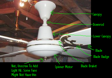 Spinner Ceiling Fan With Lower Canopy