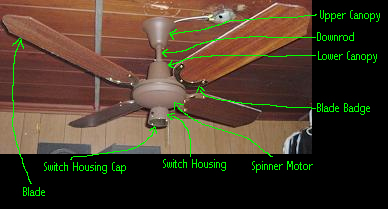 Spinner Ceiling Fan With Lower Canopy and Switch Housing