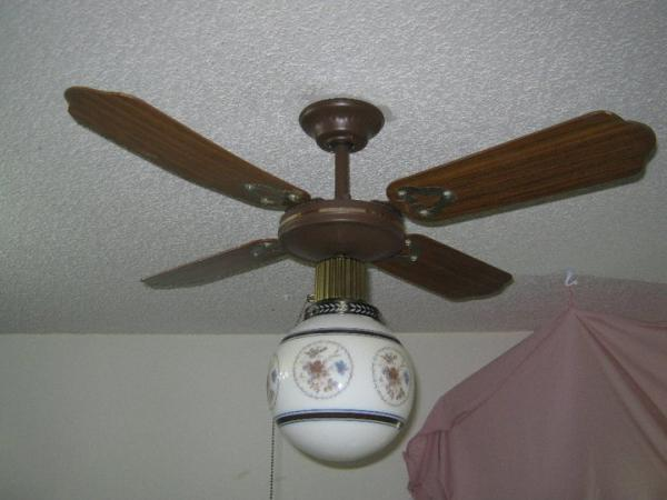 """Looking For 4"""" Floral Globe For Laguna 