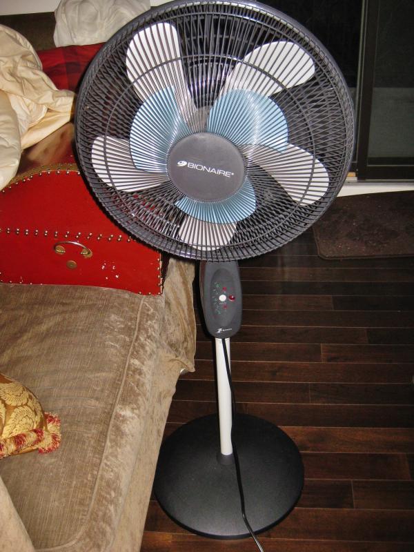 Bionaire 2Cool 16'' Pedestal Fan by Jean2291 in Bionaire