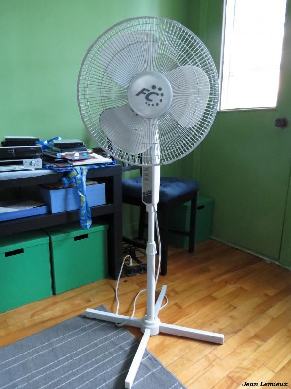 FC 40 cm Pedestal Fan