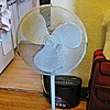 Honeywell 16'' Pedestal Fan