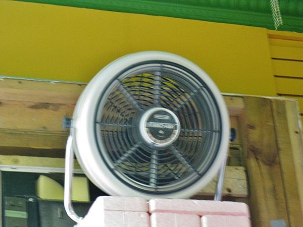 Seabreeze Turbo-Aire 30 cm Floor Fan by Jean2291 in Seabreeze