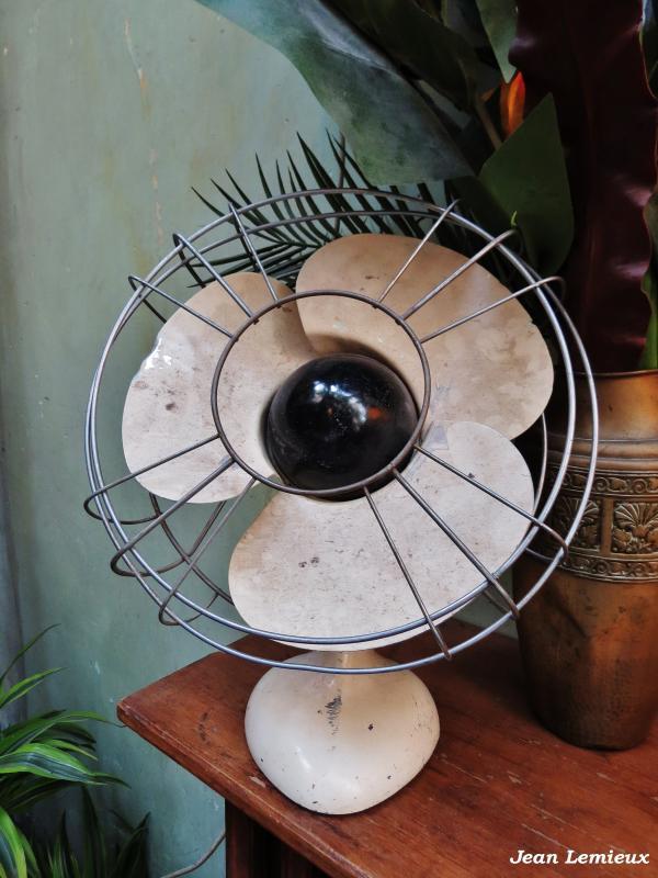 Elge Desk Fan