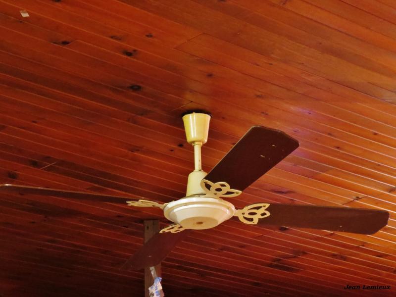 TAT Spinner 52'' by Jean2291 in Wing Tat
