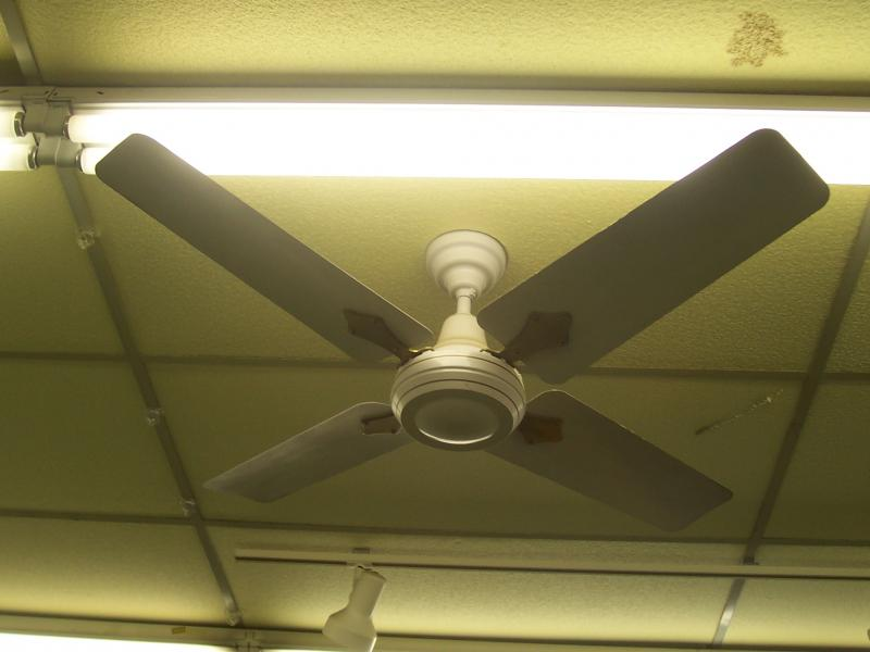 "Encon Crompton Greaves High Breeze 48"" by Andrew G. in Crompton Greaves"