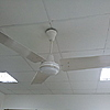 Crompton Greaves High Efficiency by The Tais in Crompton Greaves