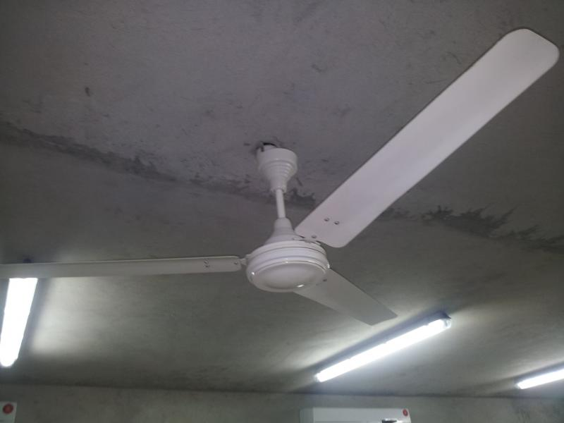 Crompton Greaves High Breeze 56'' by The Tais in Crompton Greaves