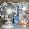 White-Westinghouse Personal Desk Fan
