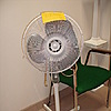 Windmere 16'' Pedestal Fan